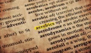 Step Aerobic Fitness Weingarten